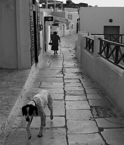 Genius Loci #20 by Jeremy Chin - Dog and Old Woman, Walk, Santorini, Greece