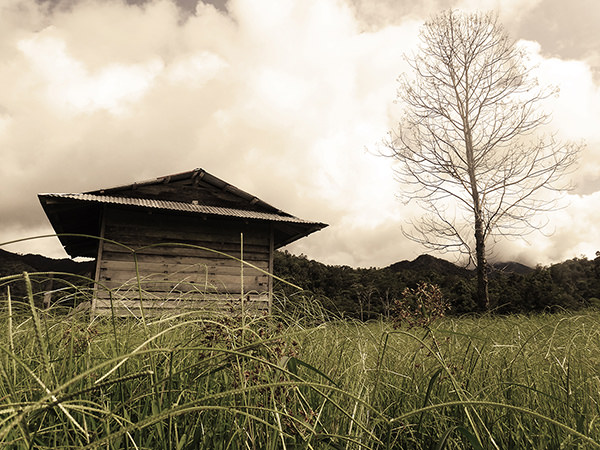 Lenscapes #6 by Jeremy Chin - Paddy Hut, Bario, Sarawak