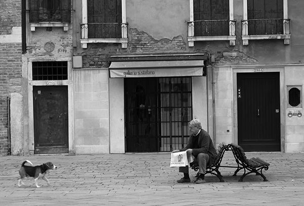 Quiet Times #31 by Jeremy Chin - Old Man Reading Newspaper on a Bench,  Venice, Italy