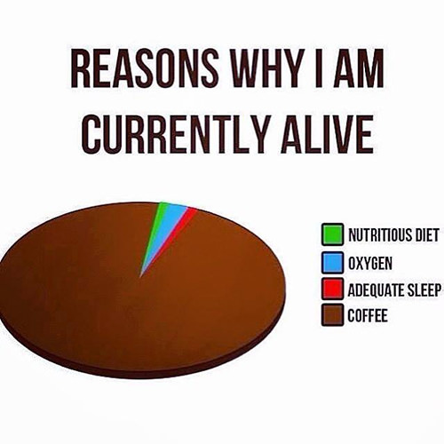 Coffee #10: Reasons why I am currently alive.