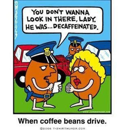Coffee #130: You don't wanna look in there, Lady. He was decaffeinated.