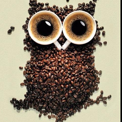 Coffee #183: Coffee Owl