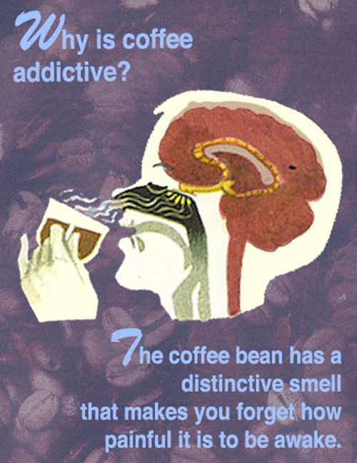 Coffee #188: Why is coffee addictive? The coffee bean has a distinctive smell that makes you forget how painful it is to be awake.