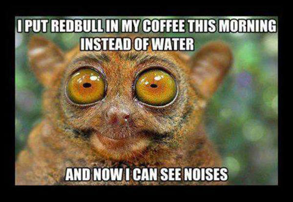 Coffee #204: I put Redbull in my coffee this morning instead of water. And now I can see noises.