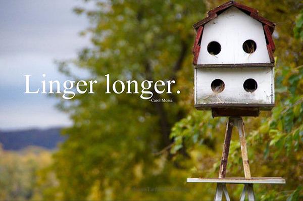 Favorite Things #25: Linger longer.