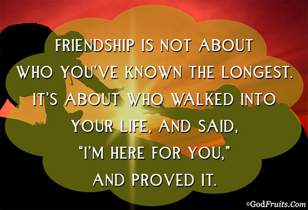 Friendship #30: Friendship is not about who you've known the longest. It's about who walked into your life and said,