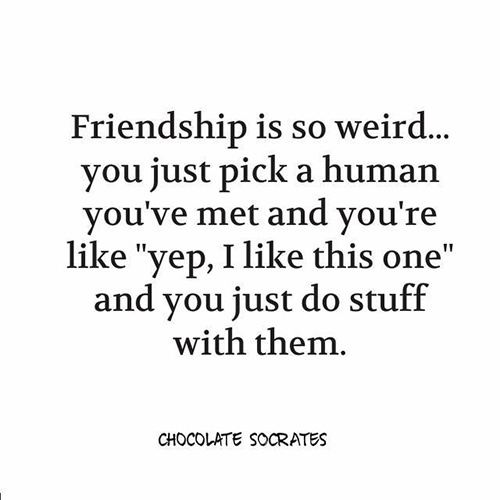 Friendship #52: Friendship is so weird. You just pick a human you've met and you're like,