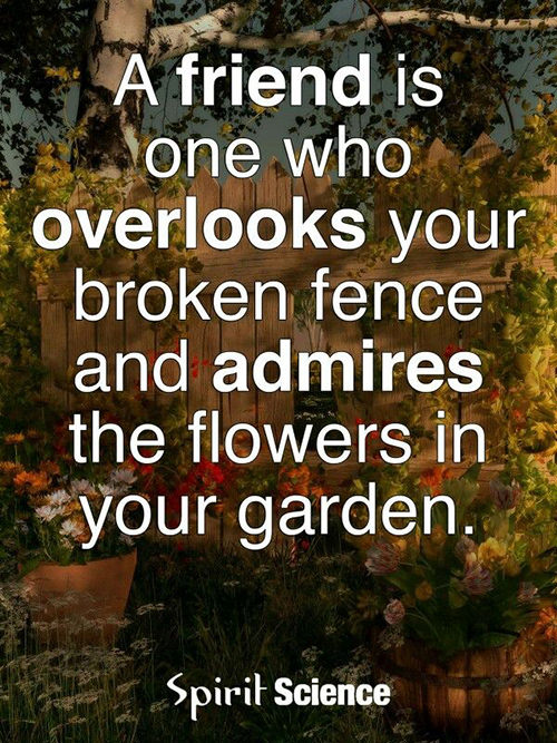 Friendship #58: A friend is one who overlooks your broken fence and admires the flowers in your garden.