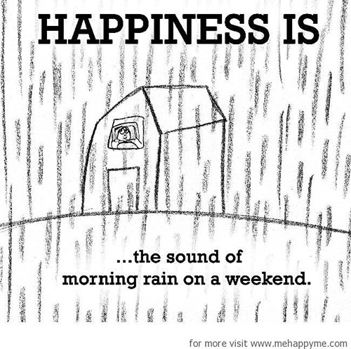 Happiness #171: Happiness is the sound of morning rain on a weekend.