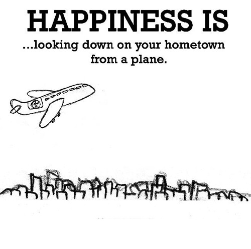 Happiness #227: Happiness is looking down on your hometown from a plane.