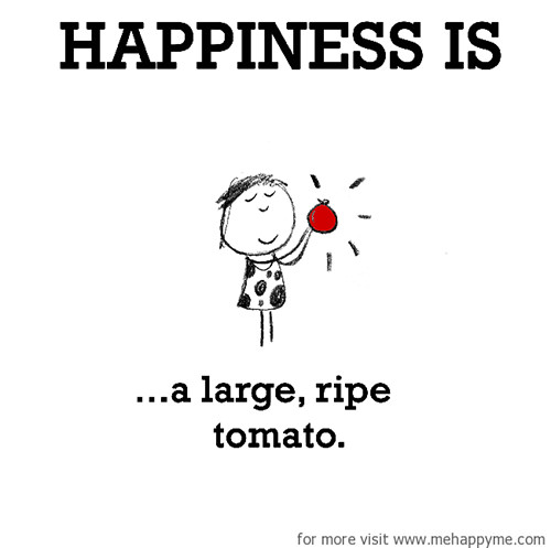 Happiness #231: Happiness is a large ripe tomato.