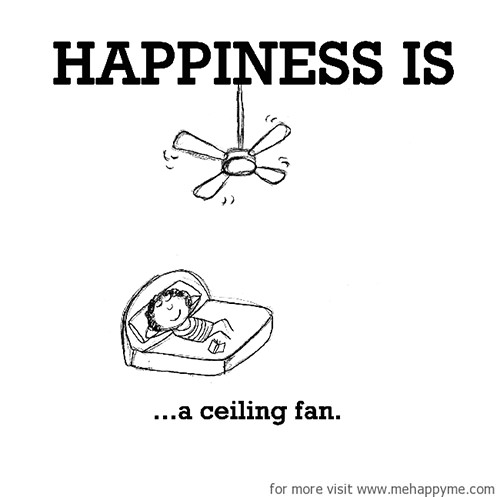 Happiness #253: Happiness is a ceiling fan.