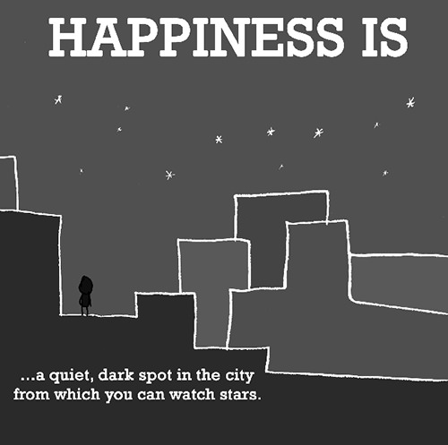 Happiness #258: Happiness is a quiet, dark spot in the city from which you can watch stars.