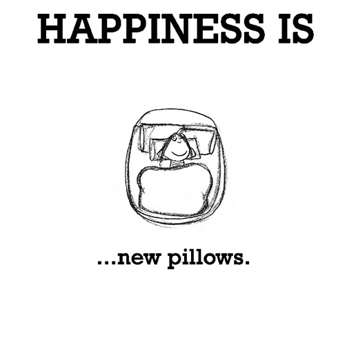 Happiness #261: Happiness is new pillows.