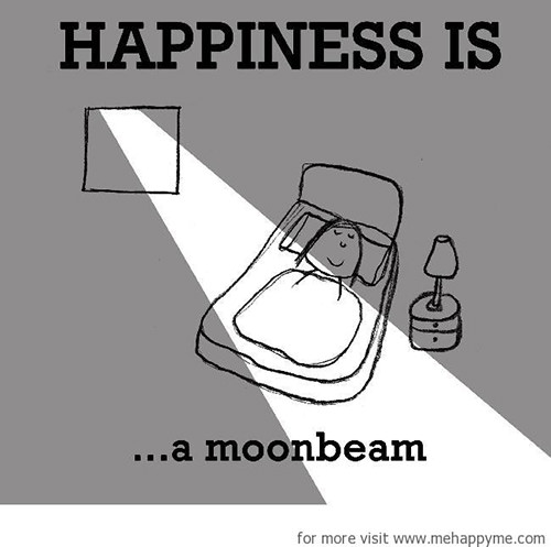 Happiness #264: Happiness is a moonbeam.