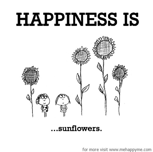 Happiness #270: Happiness is sunflowers.