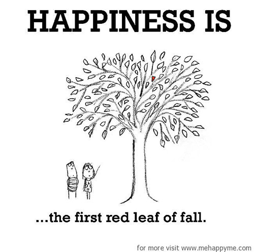 Happiness #274: Happiness is the first red leaf of fall.