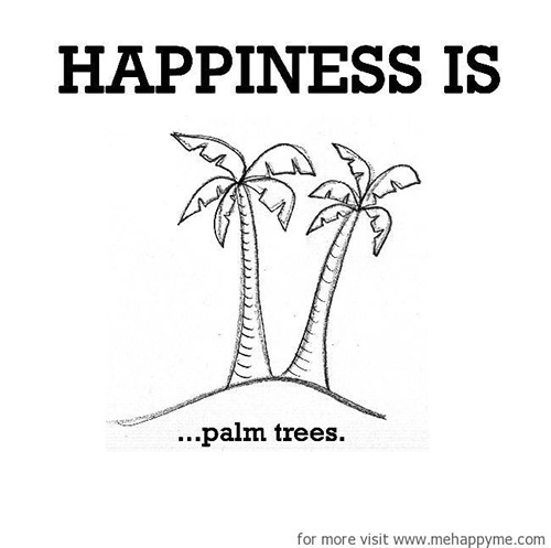 Happiness #300: Happiness is palm trees.