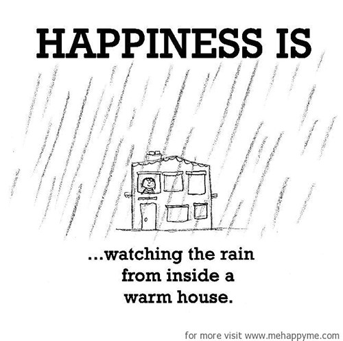Happiness #331: Happiness is watching the rain from inside a warm house.