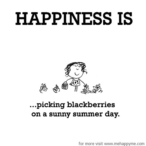 Happiness #370: Happiness is picking blackberries on a sunny summer day.