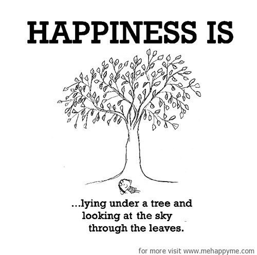 Happiness #377: Happiness is lying under a tree and looking at the sky through the leaves.
