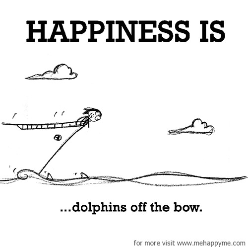 Happiness #385: Happiness is dolphins off the bow.