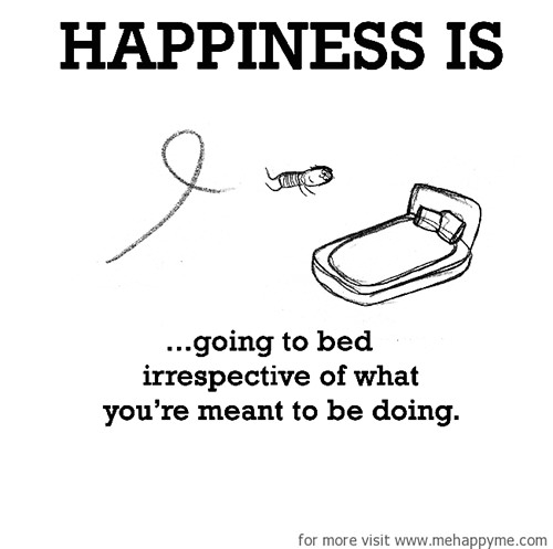 Happiness #421: Happiness is going to bed irrespective of what you're meant to be doing.