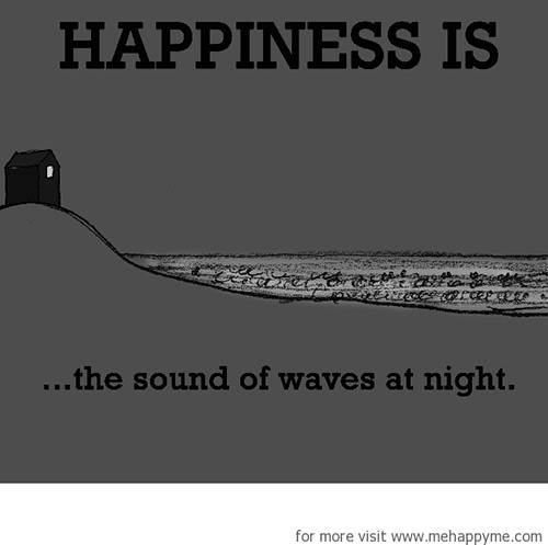 Happiness #431: Happiness is the sound of waves at night.