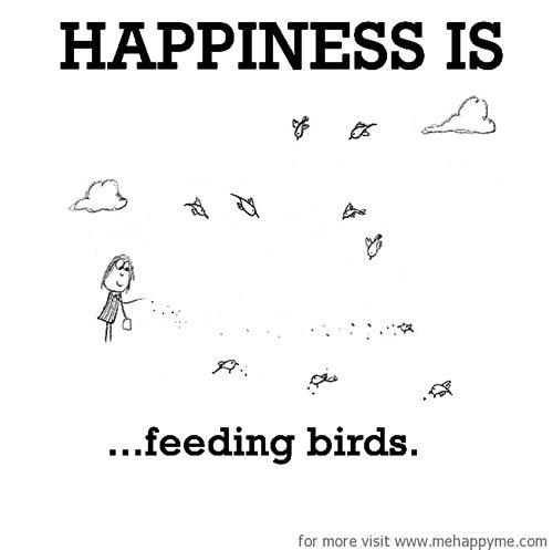Happiness #436: Happiness is feeding birds.