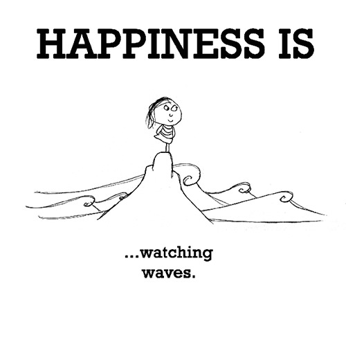 Happiness #479: Happiness is watching waves.