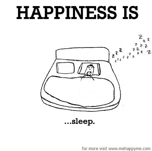 Happiness #529: Happiness is sleep.
