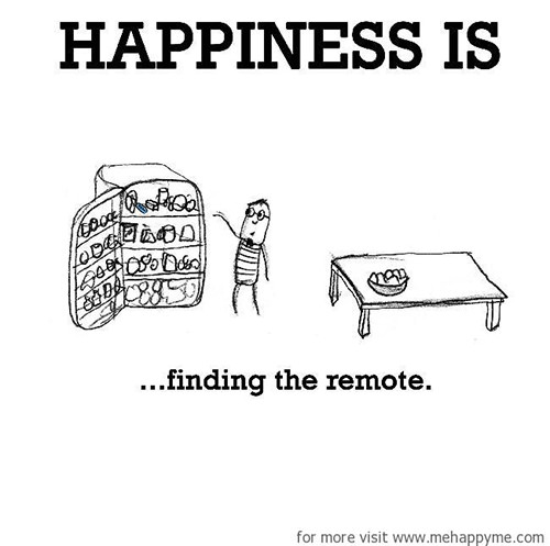 Happiness #566: Happiness is finding the remote.