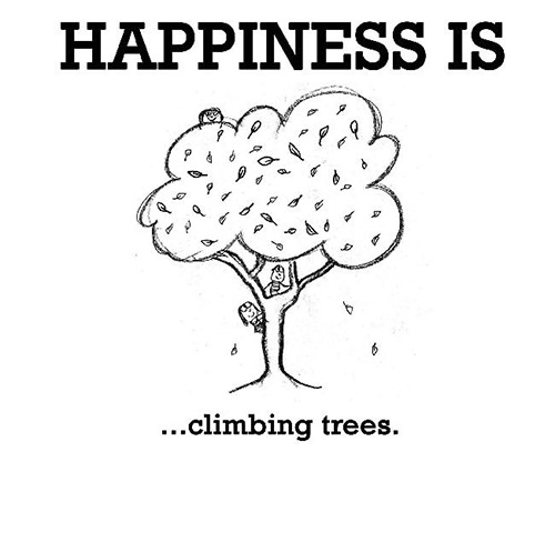 Happiness #655: Happiness is climbing trees.