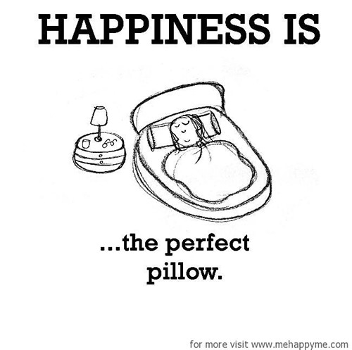 Happiness #662: Happiness is the perfect pillow.