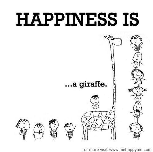 Happiness #668: Happiness is a giraffe.