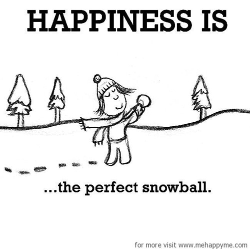 Happiness #700: Happiness is the perfect snowball.