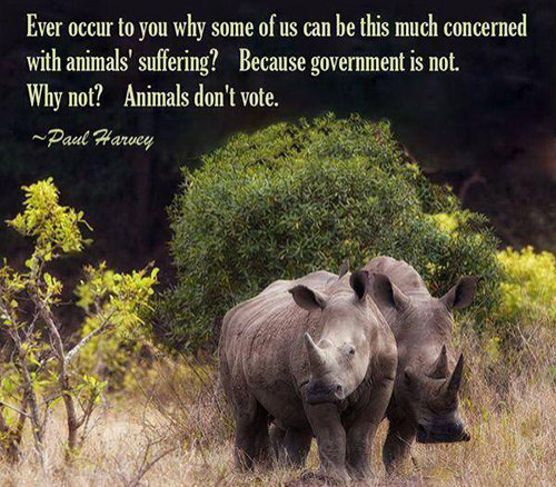 Hard Truths #14: Ever occur to you why some of us can be this much concerned with animals' suffering? Because government is not. Why not? Animals don't vote. - Paul Harvey