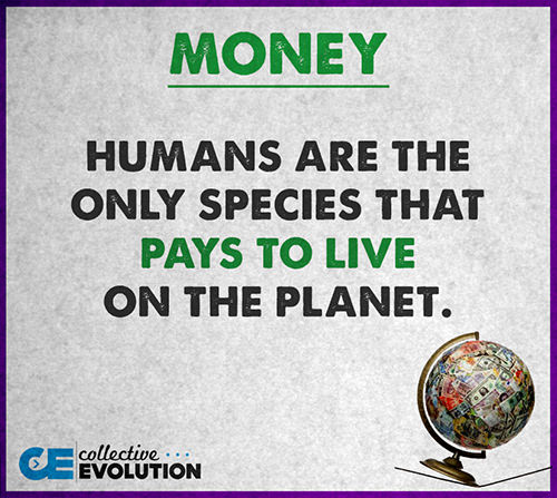 Hard Truths #62: Humans are the only species that pays to live on the planet.