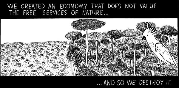 Hard Truths #68: We created an economy that does not value the free services of nature, and so we destroy it.