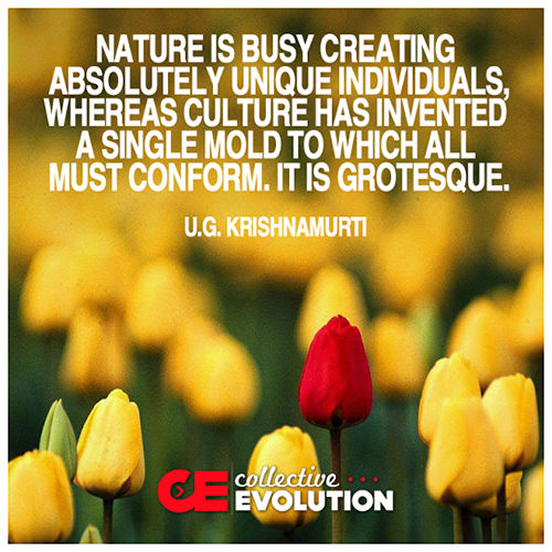Hard Truths #74: Nature is busy creating absolutely unique individuals, whereas culture has invented a single mold to which all must conform. It is grotesque.
