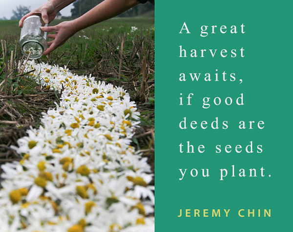 Jeremy Chin #30: A great harvest awaits, if good deeds are the seeds you plant.