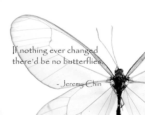 Jeremy Chin #48: If nothing ever changed, there'd be no butterflies. - Jeremy Chin