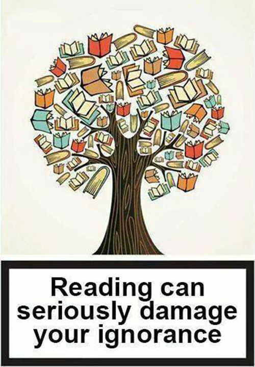 Literary #2: Reading can seriously damage your ignorance.