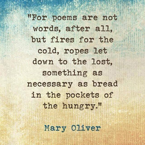 Literary #143: For poems are not words, after all, but fires for the cold, ropes let down to the lost, something as necessary as bread in the pockets of the hungry.