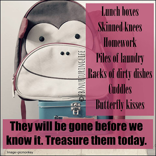 Parenting #29: Lunch boxes. Skinned knees. Homework. Piles of laundry. Racks of dirty dishes. Cuddles. Butterfly kisses. They will be gone before we know it. Treasure them today.