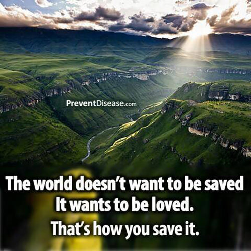 Save Our Planet #12: The world doesn't want to be saved. It wants to be loved. That's how you save it.