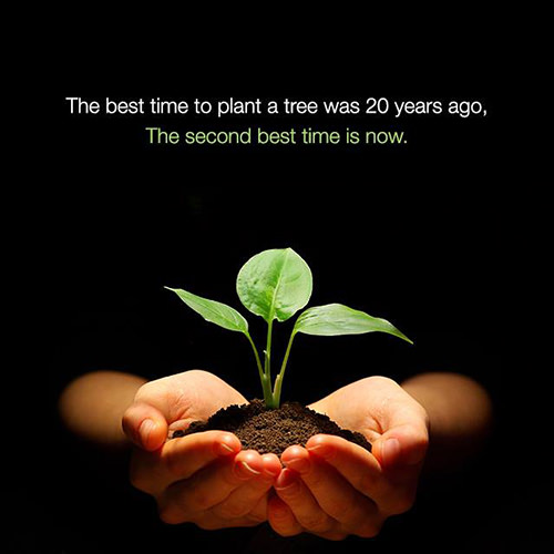 Save Our Planet #26: The best time to plant a tree was 20 years ago. The second best time is now.
