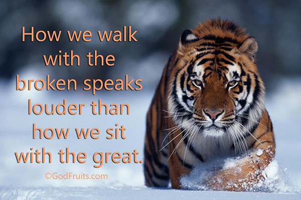 Save Our Planet #33: How we walk with the broken speaks louder than how we sit with the great.