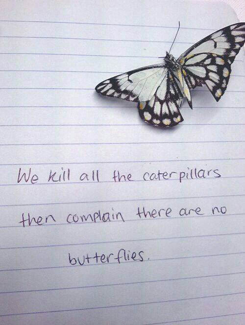 Save Our Planet #43: We kill all the caterpillars then complain there are no butterflies.