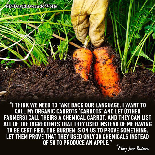Save Our Planet #56: I think we need to take back our language. I want to call my organic carrots,
